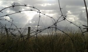 Leadership Lessons barbed wire D-Day